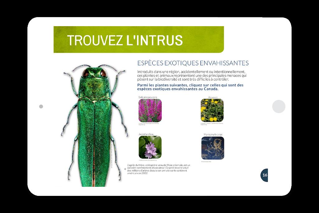biotrousses_numeriques_devices6
